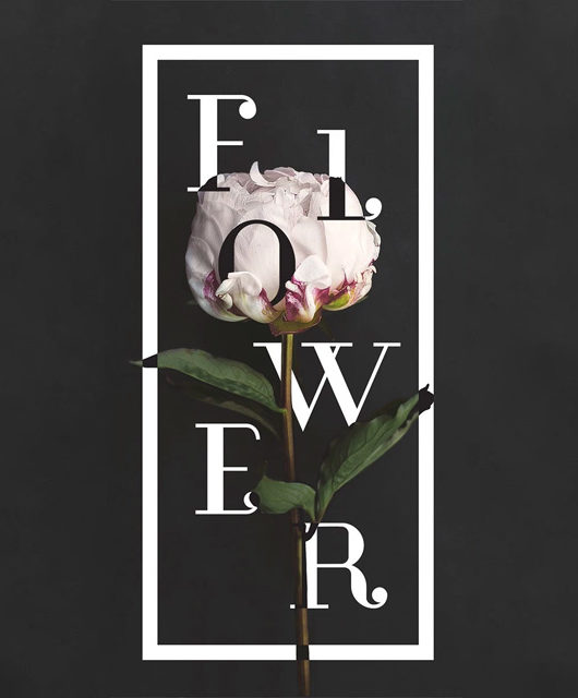 floraltypography